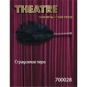 Перо TOYFA Theatre страусиное черное,40 см